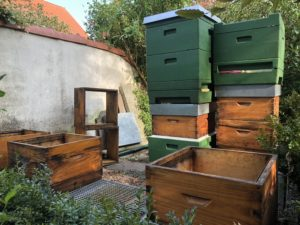 Bienenstand im goldenen September